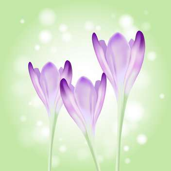 Beautiful spring violet flowers on blurred background - vector gratuit #130013