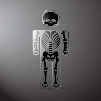 Vector glassy anatomy skeleton on grey background - vector gratuit #130023