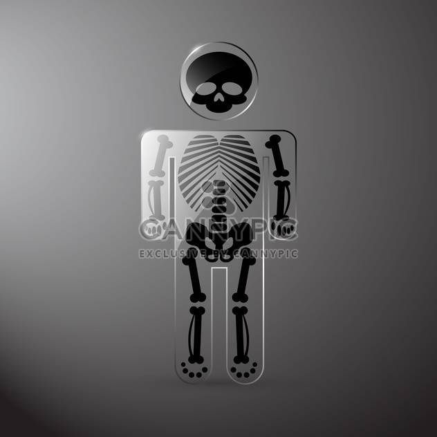 Vektor glaserl Anatomie Skelett auf grauen Hintergrund - Kostenloses vector #130023
