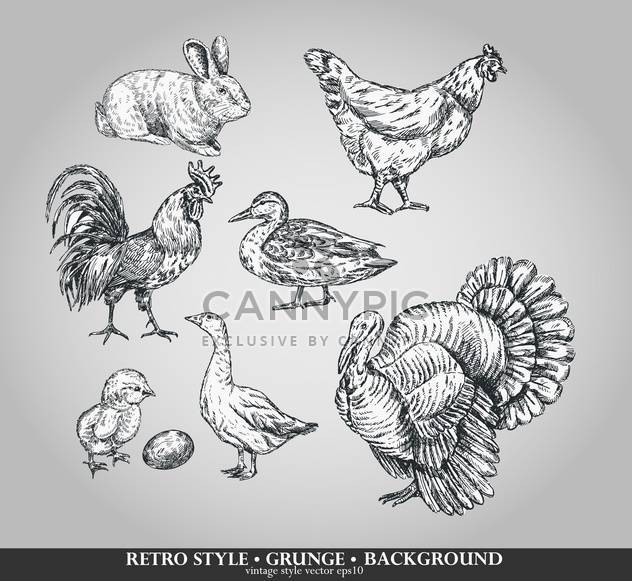 farm birds sketch retro set - Free vector #135103