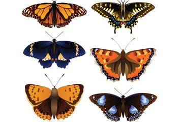 Vector butterfly - Free vector #141523