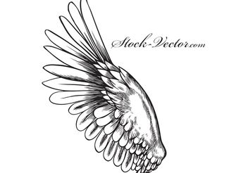 Free vector wing - Free vector #141553