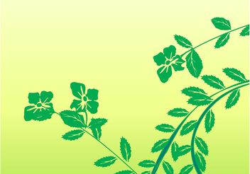 Spring Branches - Free vector #146373