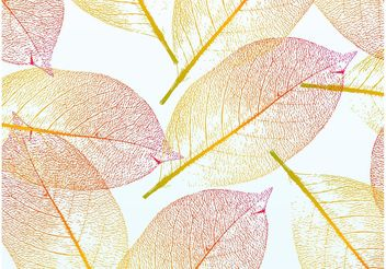 Pretty Autumn Leaves - Free vector #153033