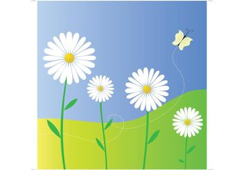 Daisy Flowers - Free vector #153433