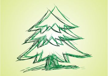 Fir Vector Drawing - бесплатный vector #156673