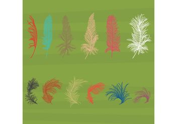 Isolated Feather Vectors - vector gratuit #157593