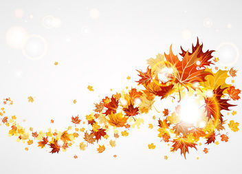 Floating Maple Leaf with Glares on Grey - Free vector #165433
