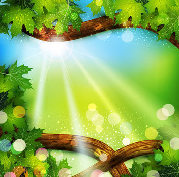 Tree Branch Frame with Sunlight Background - vector gratuit(e) #166363