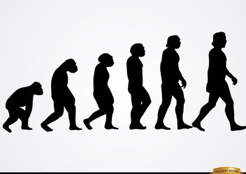 Human evolution silhouettes - Free vector #166523