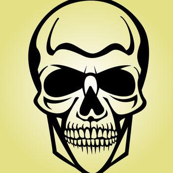 Black & White Human Cranium - Free vector #173603