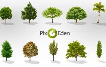 Vector Realistic Trees - Free vector #174353