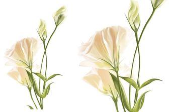 Flower - vector gratuit(e) #177713