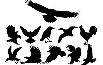 Birds Silhouettes - Free vector #178363