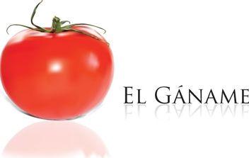 Tomato - vector gratuit #178673