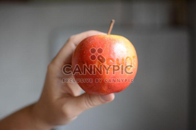 Hand holding apple - Free image #182763