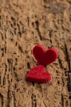 Red hearts on wood - image gratuit #182983