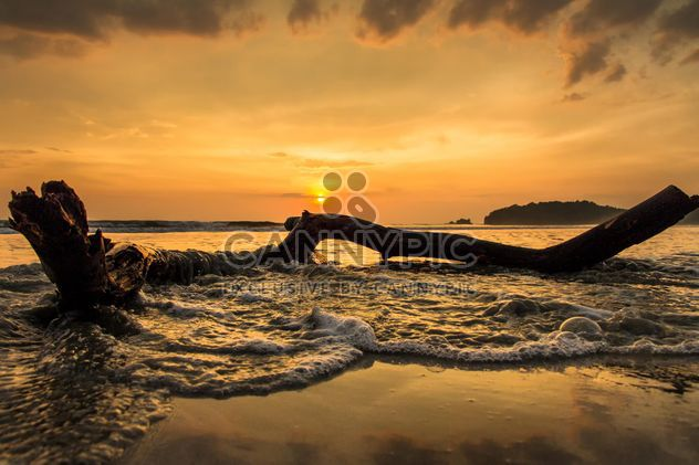 Log on a beach - Free image #183513