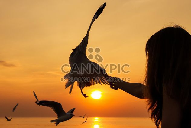 Alimentação gaivota menina - Free image #183543
