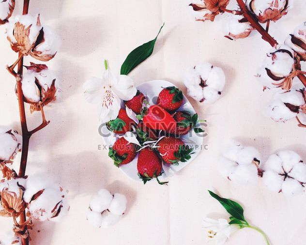 fresa con flor de algodón - image #184163 gratis