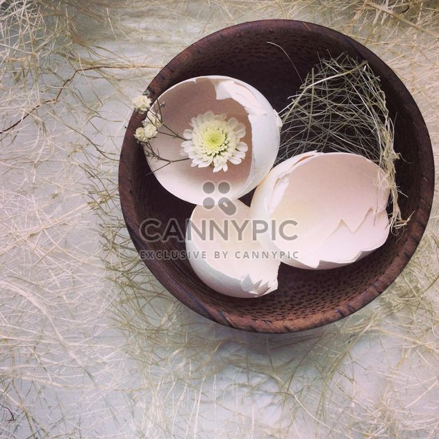 Coquilles de œufs - image gratuit #184383