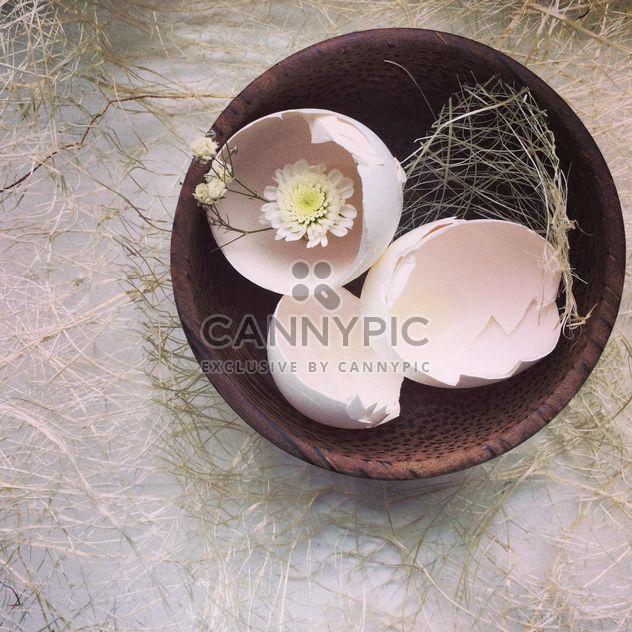 Coquilles de œufs - Free image #184383