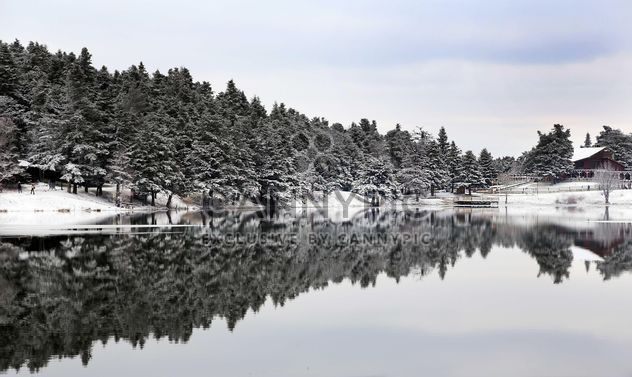 Pond in winter - Free image #185953