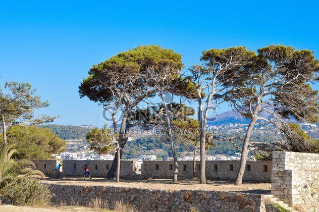 Bäume unter blauen Himmel - Kostenloses image #186263