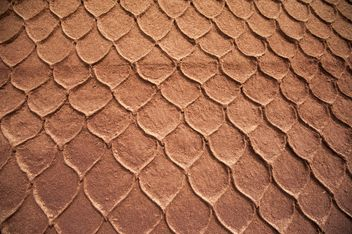 Snake leather texture - Free image #186353