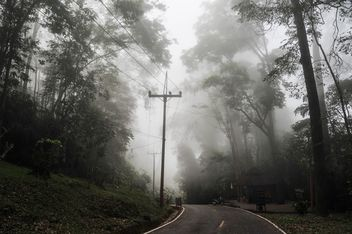 Rural road in misty morning - Kostenloses image #186453