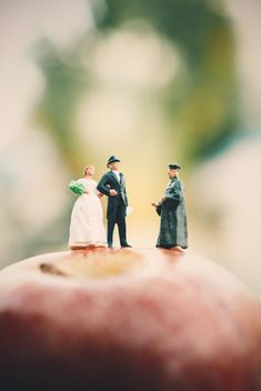 Miniature people on apple - Free image #187123