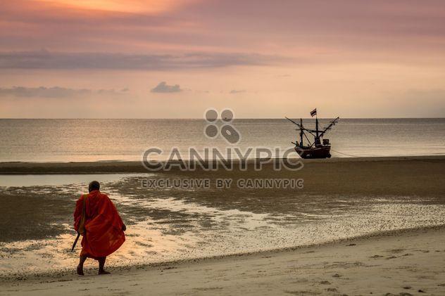 Moine marchant sur la plage - Free image #200183