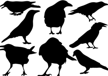 Free Raven Silhouette Vector - Free vector #200613