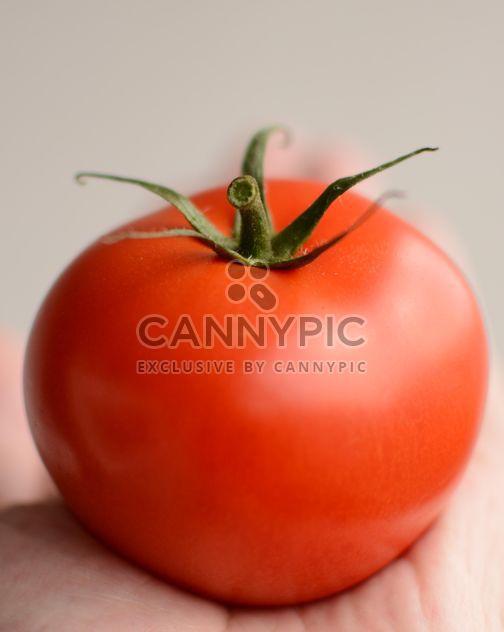 tomate - image #201443 gratis