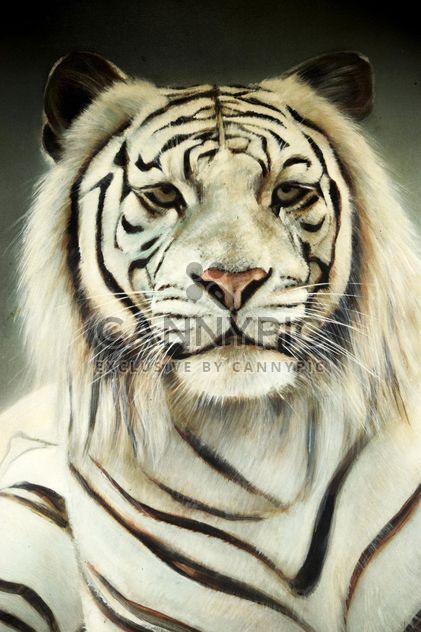 Tigre blanco - image #201673 gratis