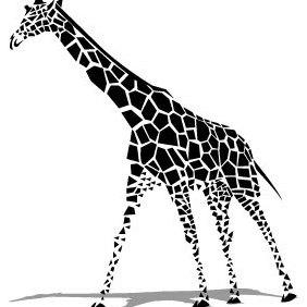 Giraffe Vector - Kostenloses vector #203433