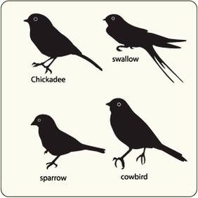 Birds 25 - Kostenloses vector #204633