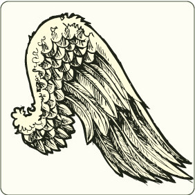 Wing 8 - Free vector #207483