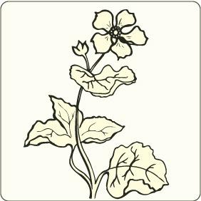 Flower 2 - бесплатный vector #208393