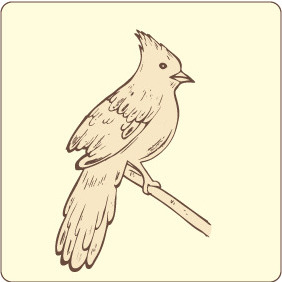 Bird 12 - Kostenloses vector #208803