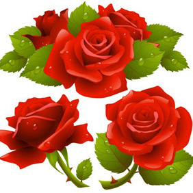 Red Realistic Roses - Free vector #209703