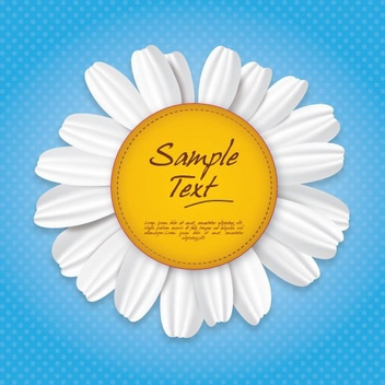 Camomile Sign - vector gratuit #210303