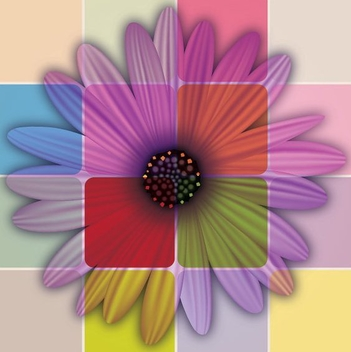 Colorful Daisy Flower - vector gratuit #211423