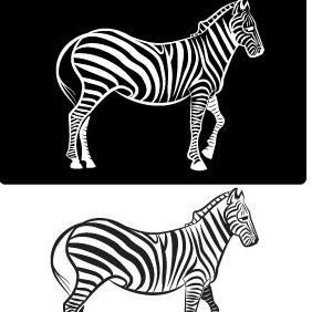 Zebra Vector Image - бесплатный vector #211473