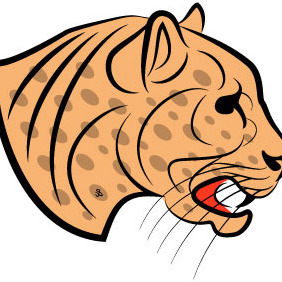 Jaguar Head Vector Image - vector #211583 gratis