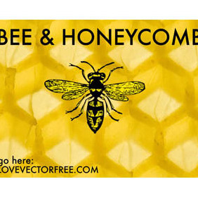 Bee And Honeycomb - vector gratuit #221013