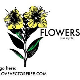 Yellow Flowers - vector gratuit #221063