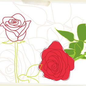 Valentines Roses - Free vector #223463