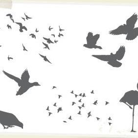 Birds - Free vector #223563