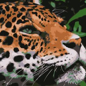 Jaguar Vector - Free vector #223683